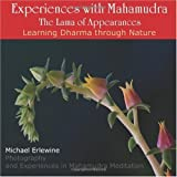 Experiences with Mahamudra: The Lama of Appearances: Learning Dharma Through Nature (145052625X) by Erlewine, Michael