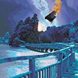 Stars Die: the Delerium Years 1991-1997 By Porcupine Tree (2002-03-25)