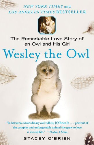 Wesley the owl