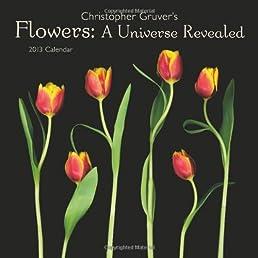 Flowers: A Universe Revealed 2013 Wall Calendar