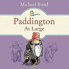Paddington at Large Audiobook by Michael Bond Narrated by Hugh Bonneville