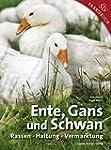 Ente, Gans und Schwan: Rassen  Haltun...