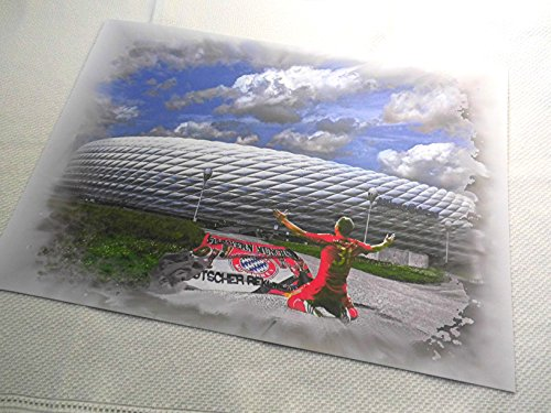 allianz-arena-un-bella-stampata-direttamente-dal-30-cm-x-42-cm-artista