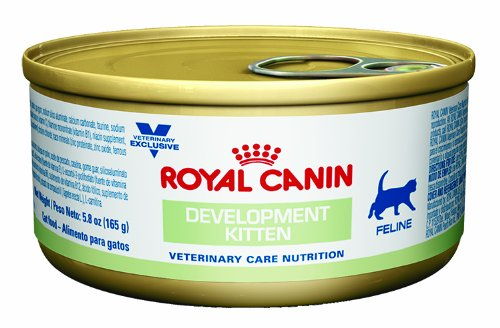 Royal Canin Feline Development Kitten Loaf In Gel