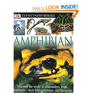 Amphibian (DK Eyewitness Books)