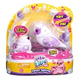 Little Live Pets S2 Tweet Talking Owl And Baby, Graceling Family