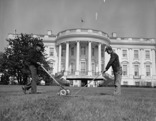 Mowing White House Lawn