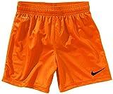 Nike Park Knit Shortslippé