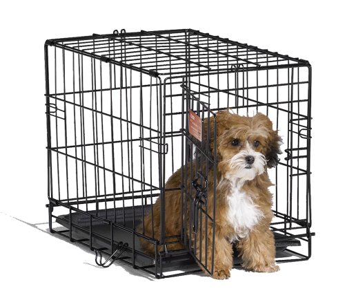 Portable Crates For Dogs