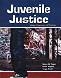 Juvenile Justice (0028009185) by Taylor, Robert W.