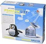 Cebekit - Tu primer kit solar La casa del pinguino, juguete educativo, color blanco (Fadisel C-9931)