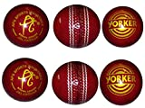 Apg Apg Yp6 Apg Yorker Red Leather Cricket Ball (Pack Of 6)