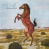 Borrow a Horse Old Calf