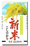 新米 28年産 宮崎産 コシヒカリ (白米, 5kg)