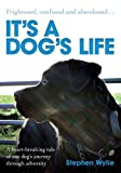 Stephen Wylie It's a Dog's Life