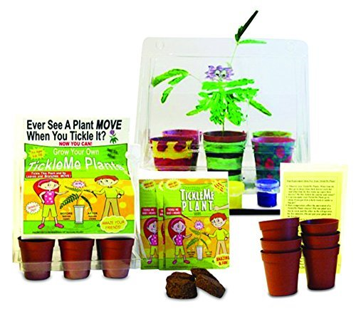 tickleme-plant-deluxe-greenhouse-kit-with-6-color-paint-set-for-kids-with-fun-activity-science-card-