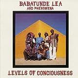 echange, troc Babatunde Lea & Phenomena - Levels Of Consciousness