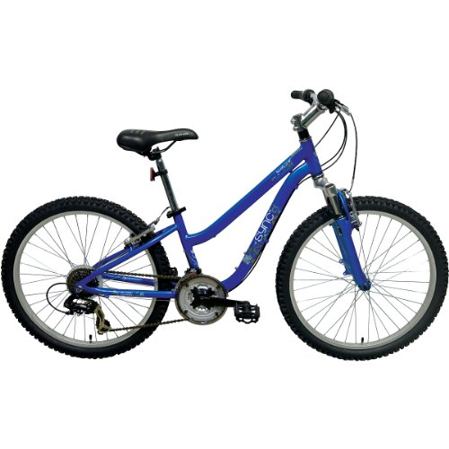 Sync Reverb 24 Bicycle 24 Inches