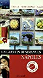 img - for Un gran fin de semana en Napoles/ A Great Weekend in Naples (Spanish Edition) book / textbook / text book