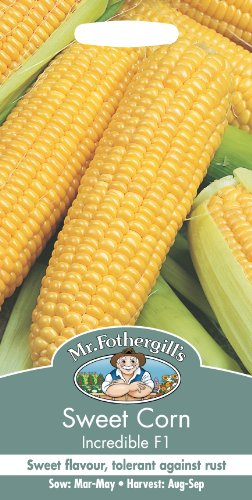 mr-fothergills-12913-sweet-corn-incredible-f1-seeds