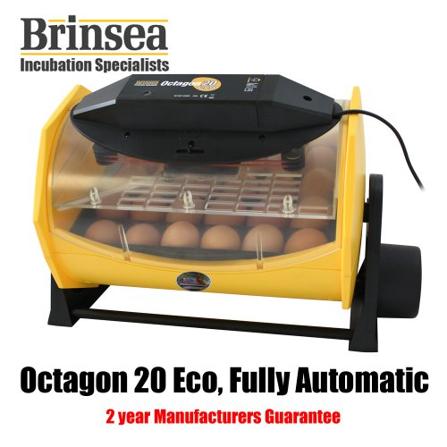 Brinsea Octagon 20 Eco Fully Automatic Incubator