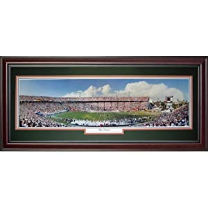 University of Miami Hurricanes (The Canes) Deluxe Framed Panoramic Photo by PalmBeachAutographs.com
