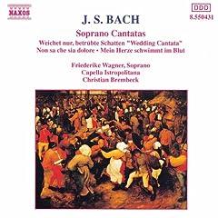 Bach, J.S.: Soprano Cantatas, Bwv 199, 202 And 209