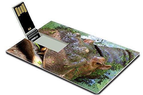luxlady-32gb-usb-flash-drive-20-memory-stick-credit-card-size-image-id-38574772-beautiful-multicolor