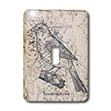 3dRose LLC lsp_110267_1 Vintage Birds with Diagram Steampunk Art Single Toggle Switch