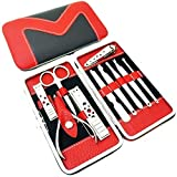 Easy Lifestyles 10 Pcs Stainless Steel Manicure Set Nail Clipper Care Personal Grooming Kit Pedicure Ear Pick Set