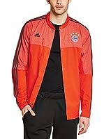 adidas Chaqueta Deporte Fc Bayern München Anthem (Rojo)