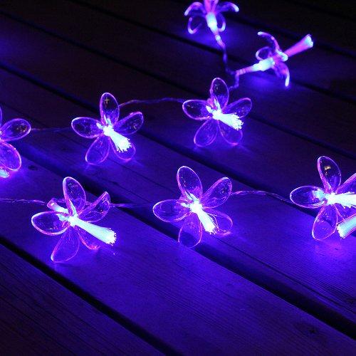 Innootech 20 Led Fairy Light String Blue Fiber Optic Flower Decorative Lights Powered By Battery