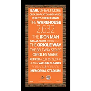 MLB Subway Sign Wall Art 9.5x19 Frame w  Authentic Dirt by Steiner Sports