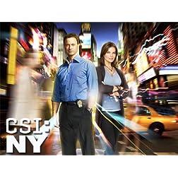 CSI: NY, Season 08