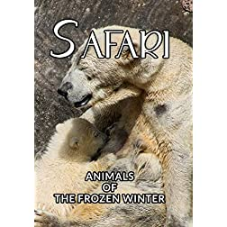 Safari Animals Of The Frozen Winter