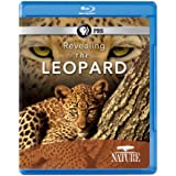 Nature: Revealing the Leopard [Blu-ray] [Import]