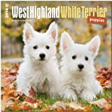 BrownTrout West Highland White Terrier Puppies 2014 Wall