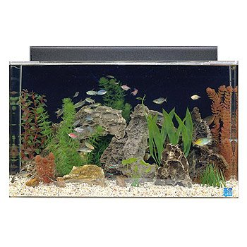 aquarium combo set 30 by 12 by 18 clear aquariums tanks item sku ...