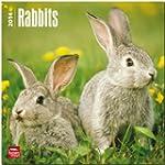 Rabbits 2014 Square 12x12