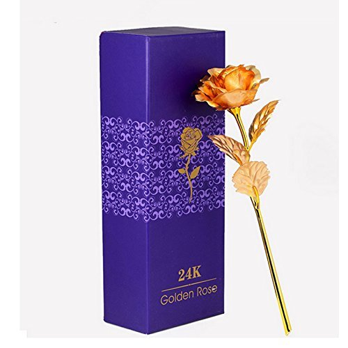 landlord-romantic-special-day-gift-long-stem-24k-gold-color-leaf-rose-flower-love-forever-luxury-flo