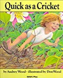 Quick Cricket (The Literature experience)