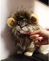 LionBuff Lion Mane Cat Costume with Ears, Christmas or Halloween Wig Cosplay Costume, Like Get Buff from Lion