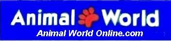 Animal World Online by Anwo