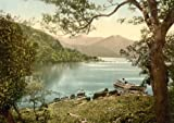 Innisfallen. Killarney. Co. Kerry, Ireland, Large Old Photograph, Print, Picture,Photo