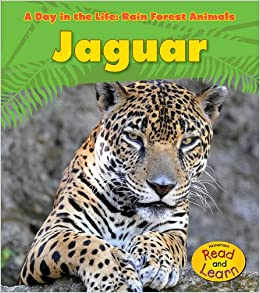 Amazon.com: Jaguar (A Day in the Life: Rain Forest Animals