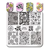 Summer Fruit Nail Art Stamping Template Tropical Punch Pattern Rectangle Image Plate Stamping Polish Needed BP-X38 (Color: BP-X38)