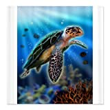 sea turtle shower curtain sale