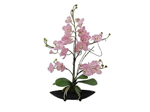 Set 2 xArreglo de orquídeas IVIE, rosa, 5 ramas, 50 cm - resistente a la intemperie - 2 unidades de Flores artificiales / Flores decorativas - artplants