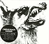 I, Vigilante by Crippled Black Phoenix (2010) Audio CD