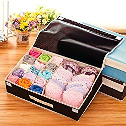 Styleys 15+1 Multi Compartment Cell Foldable Storage Box / Closet Organizer / Non-Smell Drawer Organizer, 15 grids + 1 for underwear Closet Storage for Socks, Bra, Panty, Tie, Scarf, etc - Color - Brown